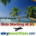 SkyAuction.com,Inc.